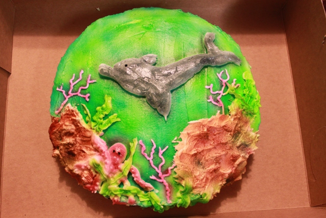 Cake 008B